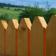 Long Fence Live Wallpaper