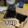 Sup Cat Live Wallpaper