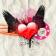 Love Forever Live Wallpaper