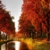 AutumnWallpaperThemes