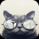 Cat with Glasses Live Wallpaper