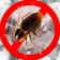 Cockroach Squeeze