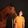 Der Feine Dialog Mit Pferden
