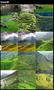 Terraces Wallpapers HD