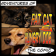 Fat Cat & Hungry Dog Comic