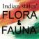 Flora_n_Fauna
