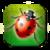 Garden Bug Smasher