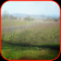 hay fruit farm