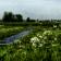 Het Weer in Nederland