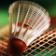 Badminton Puzzle