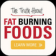 36 Fat Burning Food