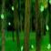 Green Forest Live Wallpaper