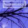 NumerologyApp