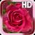 Rose Love Live Wallpaper