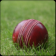 Cricket Live Scores