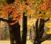 Saves Autumn