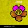 IDBERRY : Valentine Flower