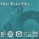 Blue Butterflies Zen