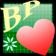 BP Diary