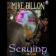 Scrying (ebook)