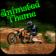 Animated: Motocross (Dirt Bike) Theme