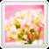 Elegant Floral Theme (Including v6.0)