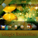 Magic Butterflies OS7 theme by BB-Freaks
