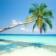 Tropical Islands HD theme