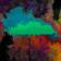 Rainbow Puddle