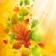 Colorful Autumn OS6