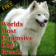 Worlds Most Expensive Dog Breeds