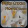 White Crocus Spring Theme