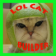 Lol Cat Builder