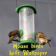 Bird Home