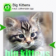 Big Kittens (Keys) for Symbian