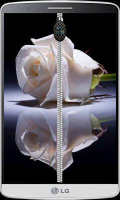Rose  Roses zipper lock screen