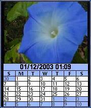 Image Calendar Flowers Edition for Series 60