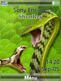 Snakes Fight-shunrey
