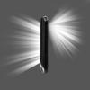 Flashlight: 2 for 1 - Free
