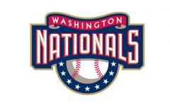 Washington Nationals Fan