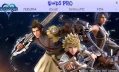 WinDS PRO 2012.10