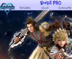 WinDS Pro 2012.06.1